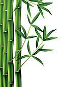 Bamboo tree · vector bamboo branches