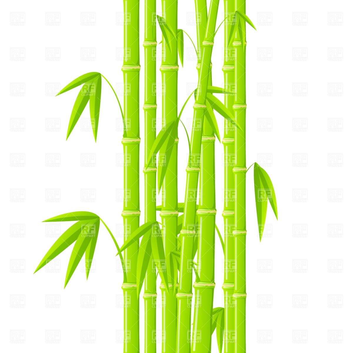 Green bamboo stems with leaves Royalty Free Vector Clip Art