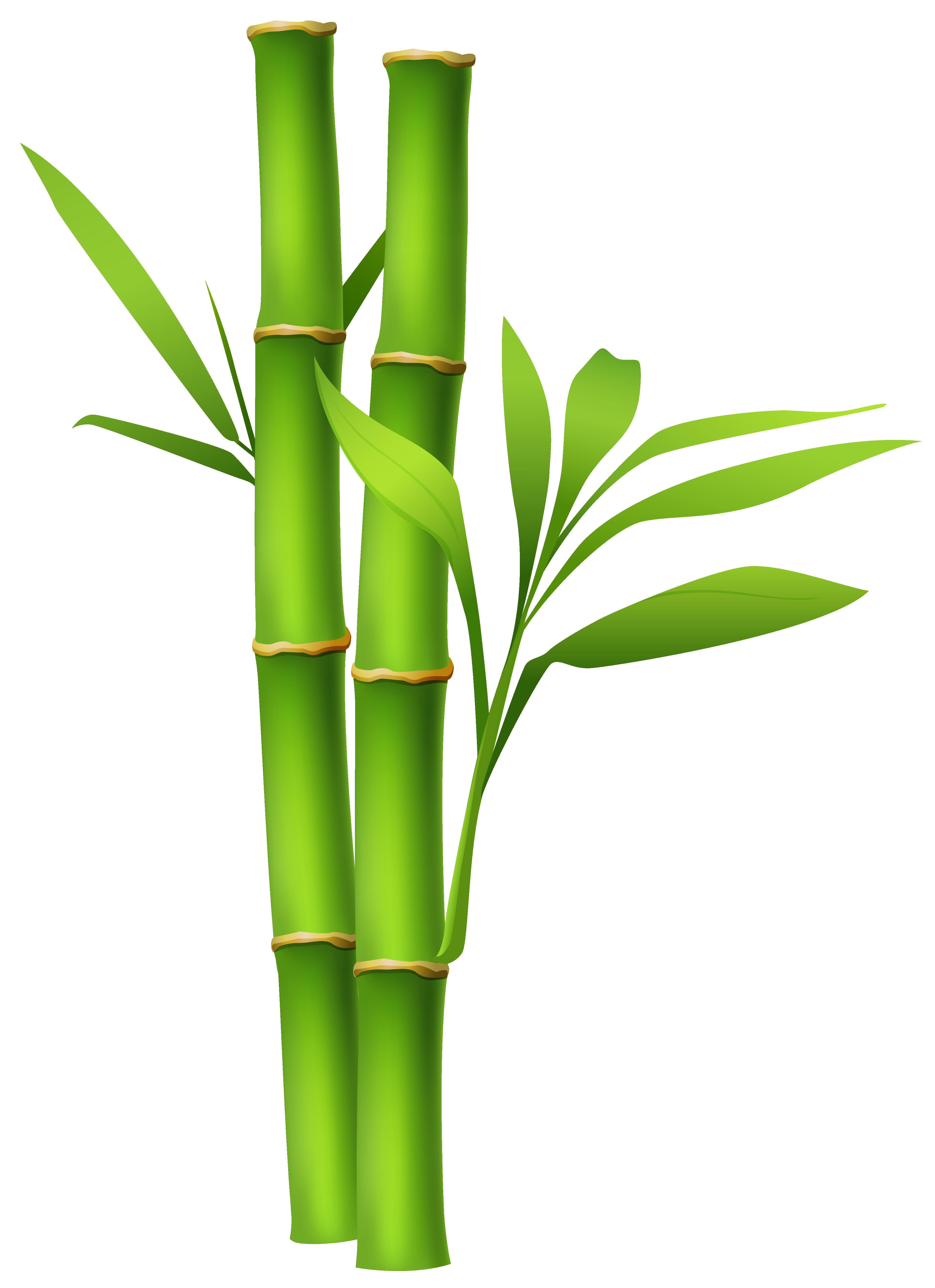 ... Bamboo Clipart - clipartall ...-... Bamboo Clipart - clipartall ...-2