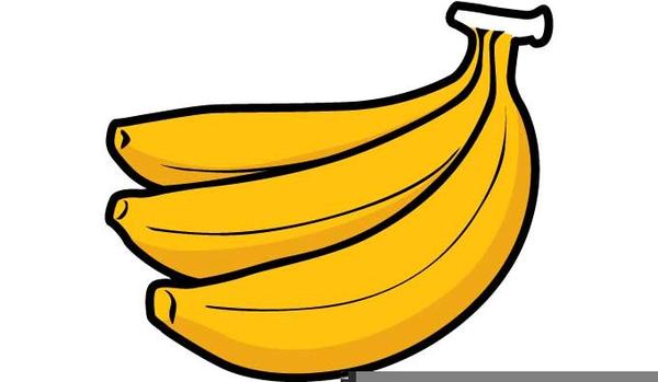 Banana Stalk Clipart image