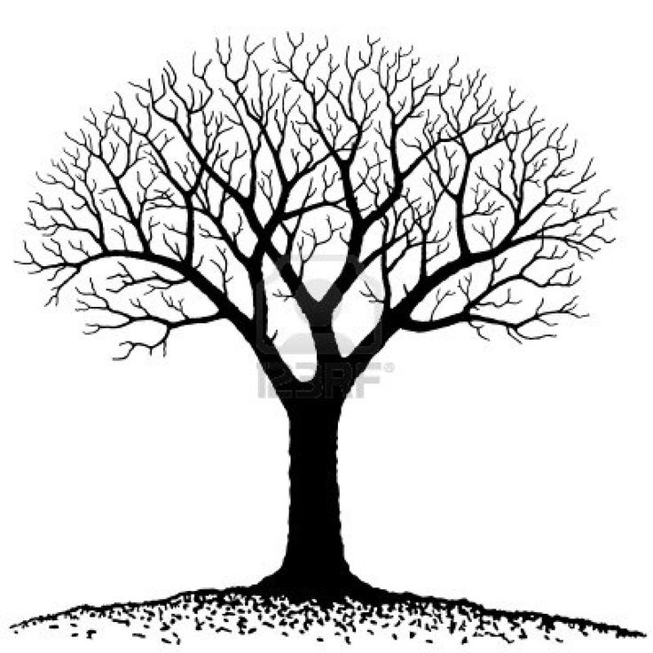 Bare Tree Royalty Free Cliparts Vectors And Stock Illustration