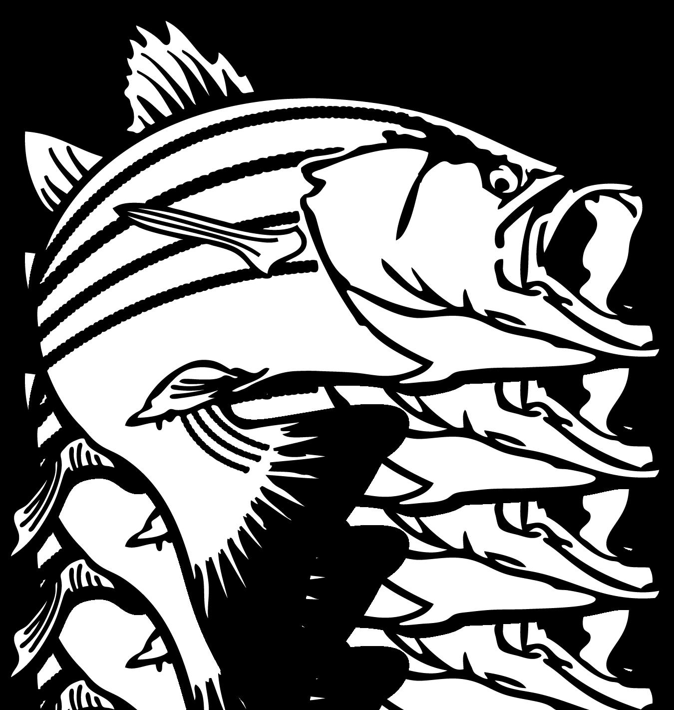 Bass Clip Art