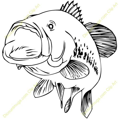 Bass Fish Clip Art 1