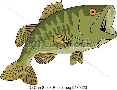 Bass fish - Vector .