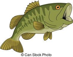 ... Bass Fish - Vector Illustration Of B-... Bass fish - Vector Illustration Of Bass fish-5