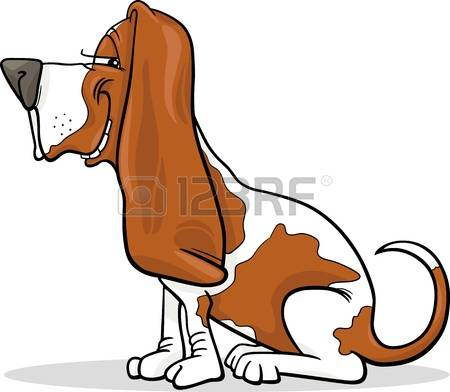 basset hound: Cartoon Illustration of Funny Purebred Spotted Basset Hound Dog