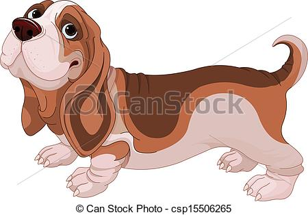 ... Basset Hound - Illustration of Basset Hound breed dog
