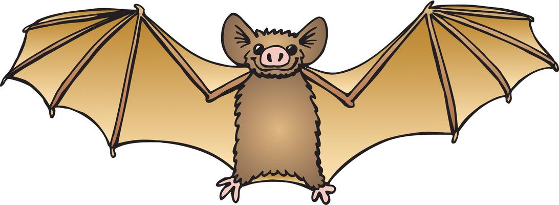 bat clipart-bat clipart-11