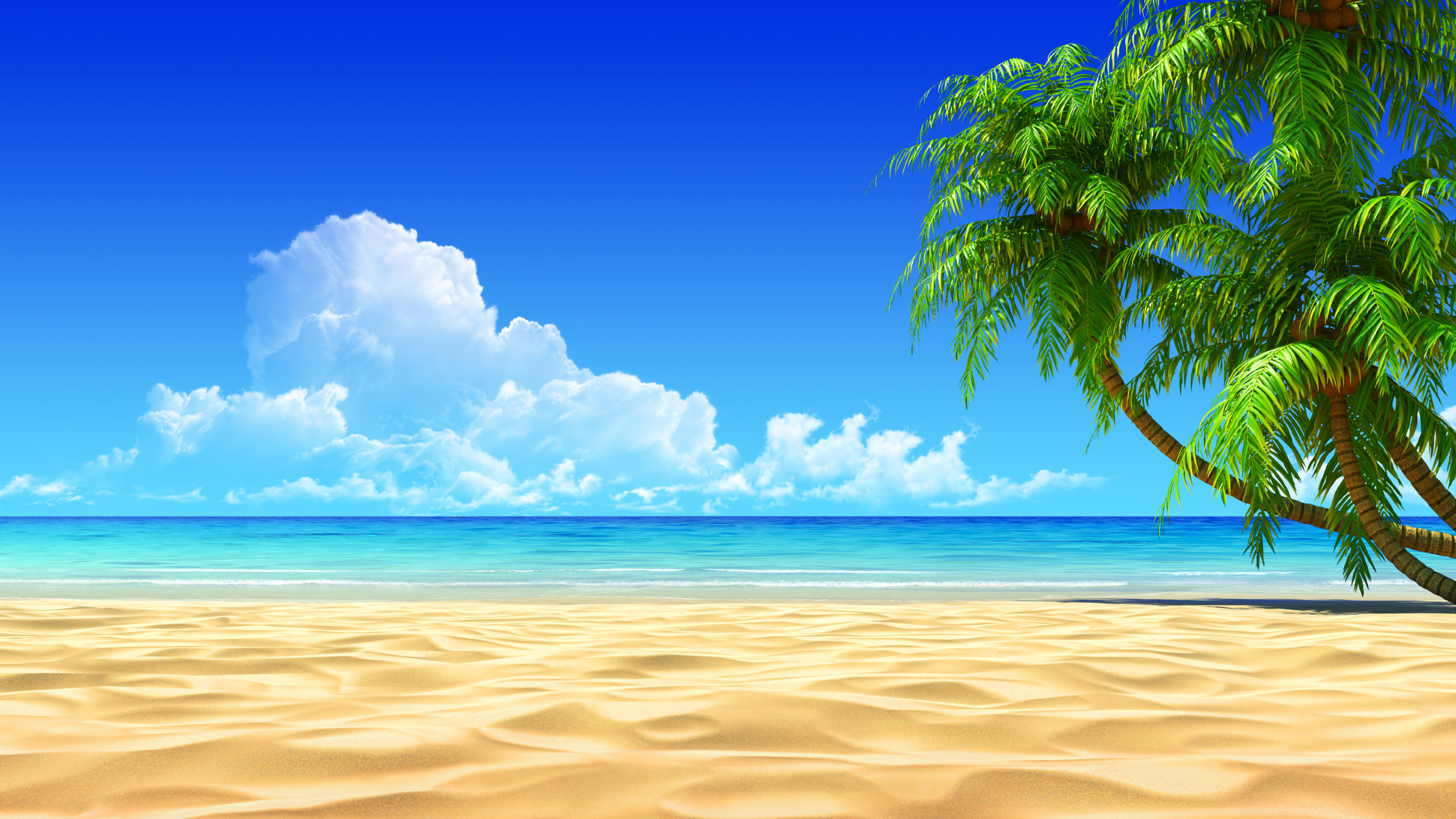 Beach Background Clipart - .-Beach Background Clipart - .-1