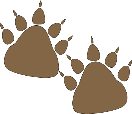 Bear Paw Prints-Bear Paw Prints-14