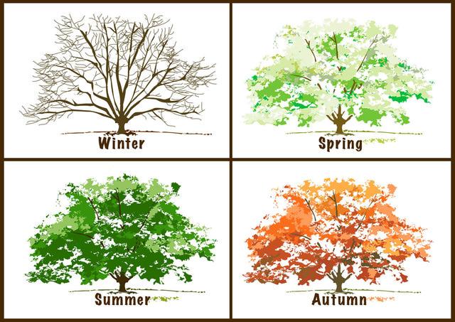 Seasons Clipart