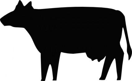 beef steer clip art