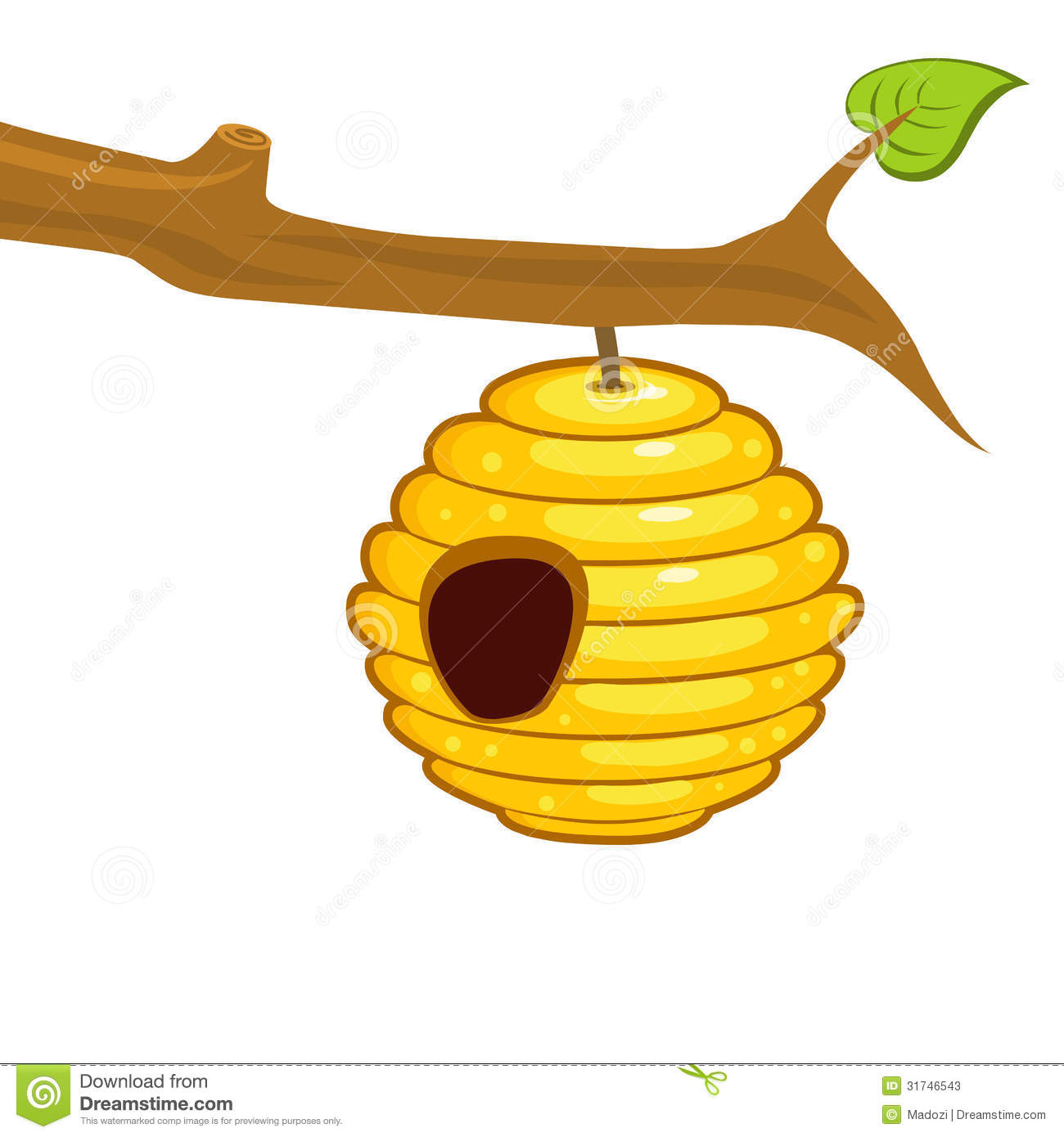 Beehive Hanging From A Branch Stock Photos Image 31746543