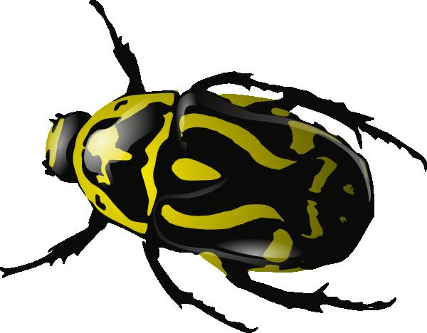 Beetle Clipart U0026middot; Insect Clipa-beetle clipart u0026middot; insect clipart-0