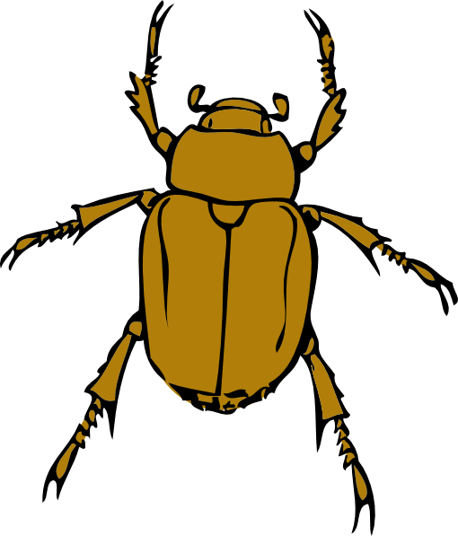 Beetle Bug Clip Art At Clker Com Vector -Beetle Bug Clip Art At Clker Com Vector Clip Art Online Royalty-9