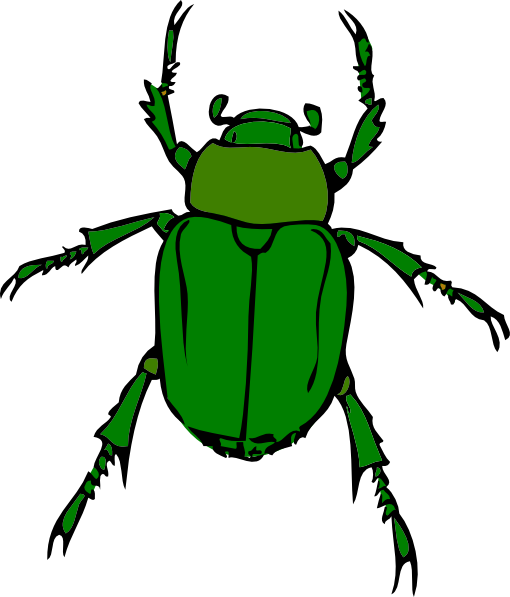 Beetle Clip Art - Beetle Clipart
