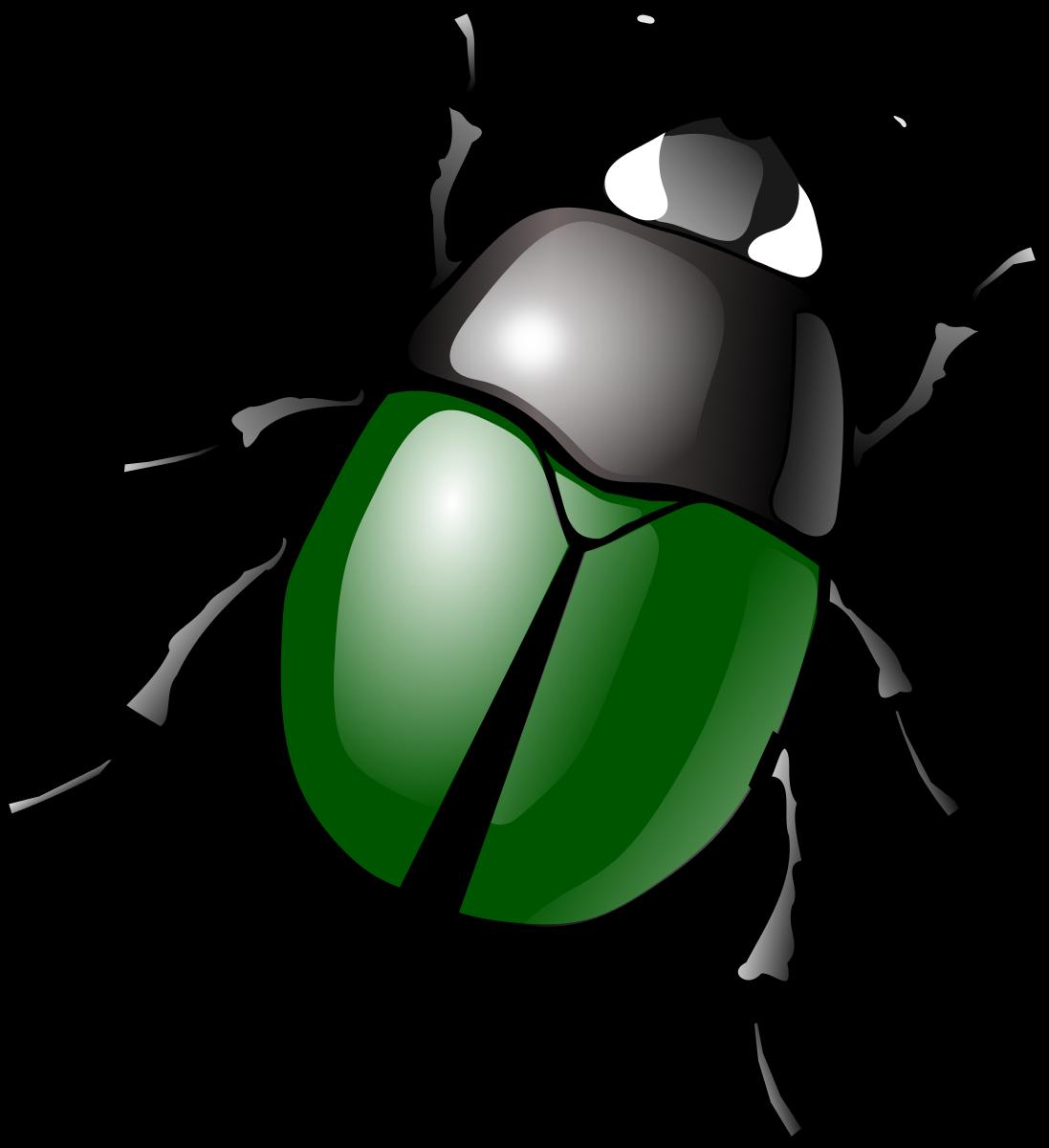 Beetle Cliparts Clip Art