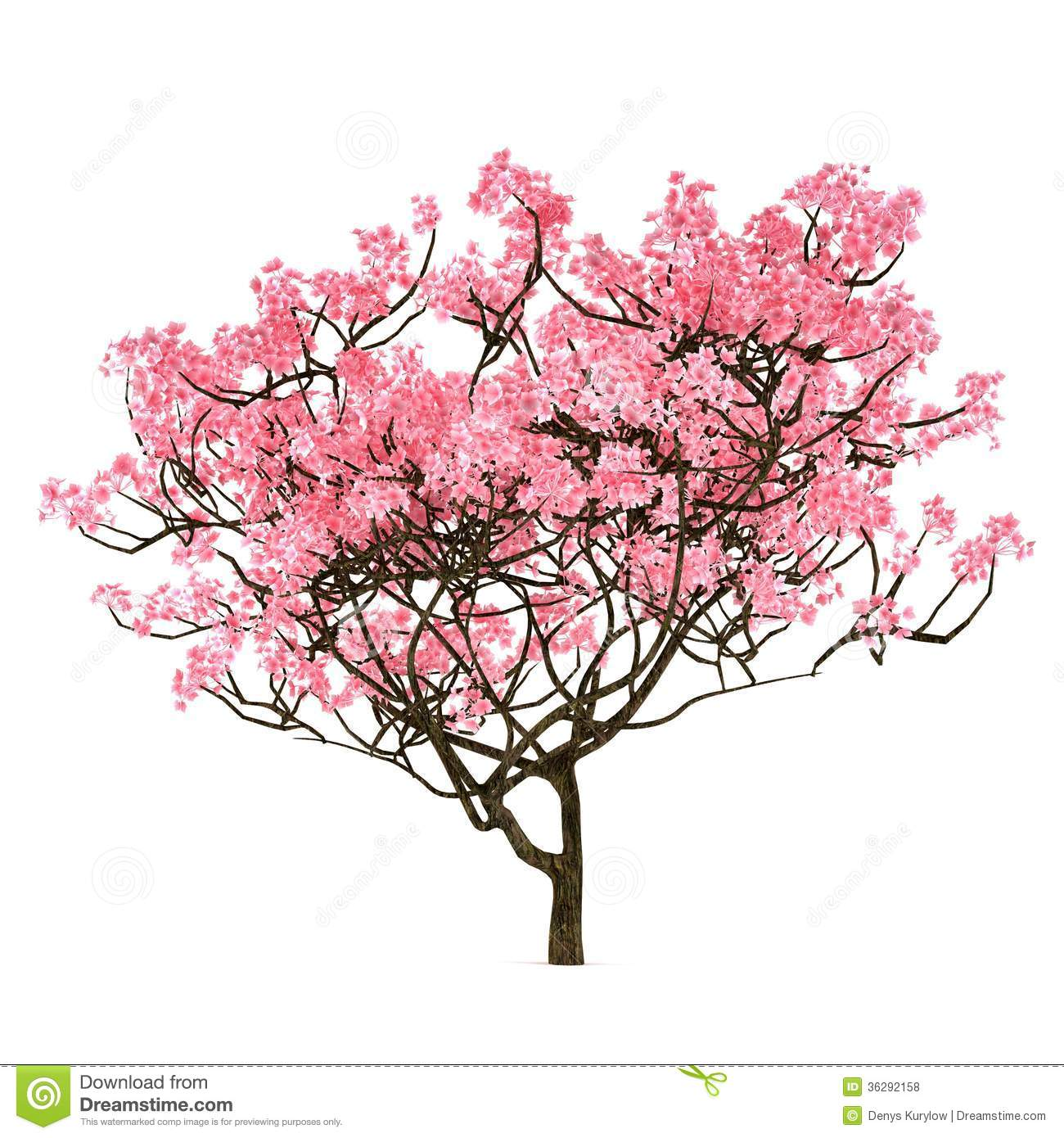 best sakura tree clipart clipartall with