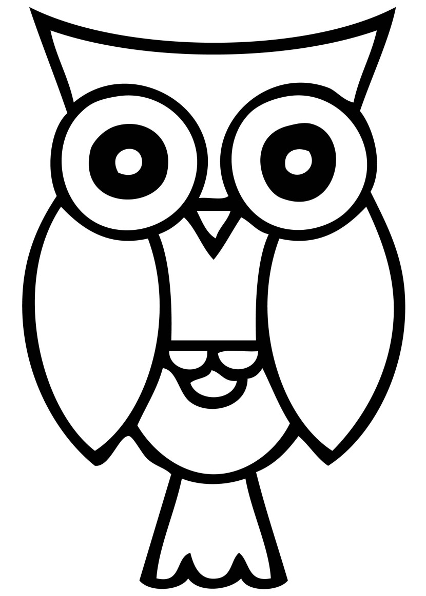 Best Smart Owl-Best Smart Owl-2