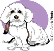 ... Bichon Frise Poodle Designer Dog - Bichon Frise, Poodle or.