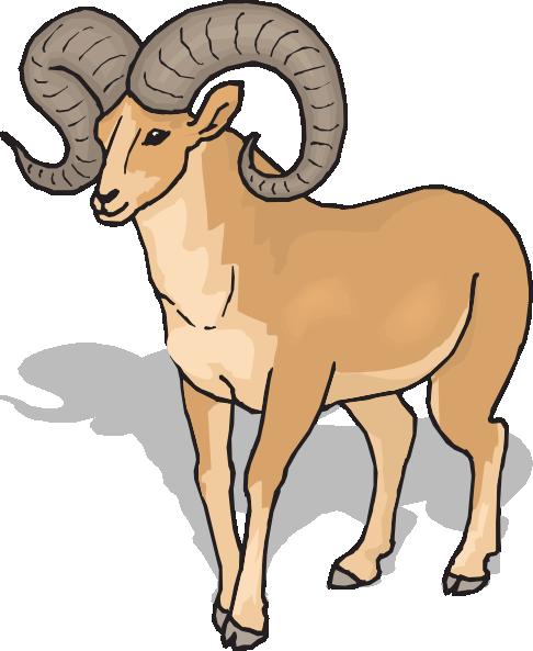 Bighorn Sheep Front View Clip Art. Ram C-Bighorn Sheep Front View Clip Art. Ram Clip Art-1