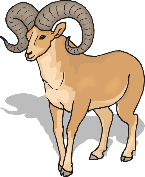 Bighorn Sheep Front View Clip Art