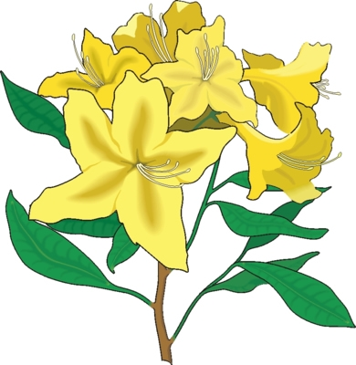 Bing Free Flowers Clipart