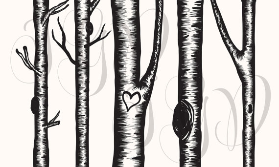 Birch Tree Digital Clip Art - Hand Drawn Winter Aspen Christmas Tree ClipArt transparent png for scrapbooking, invitations, bridal shower | Trees, ...