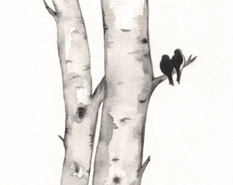 Birch Tree Love No 1 / Birds .