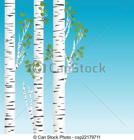 ... Birch trees with green leaves background