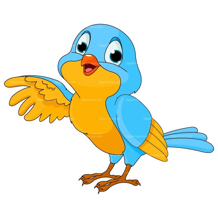 Bird Clipart | CLIPART BIRD CARTOON | Ro-Bird Clipart | CLIPART BIRD CARTOON | Royalty free vector design-6