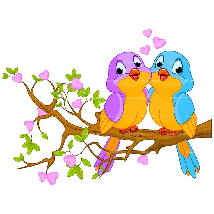 Bird Clipart | CLIPART BIRDS COUPLE | Royalty free vector design