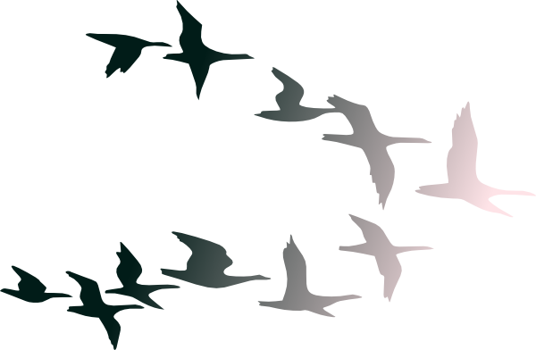 Bird Flying Clipart Clipart Panda Free Clipart Images