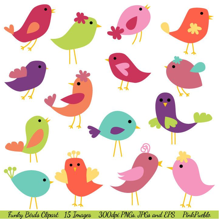 Birds Clip Art Birds Clipart - Commercial Use. $6.00, via Etsy.