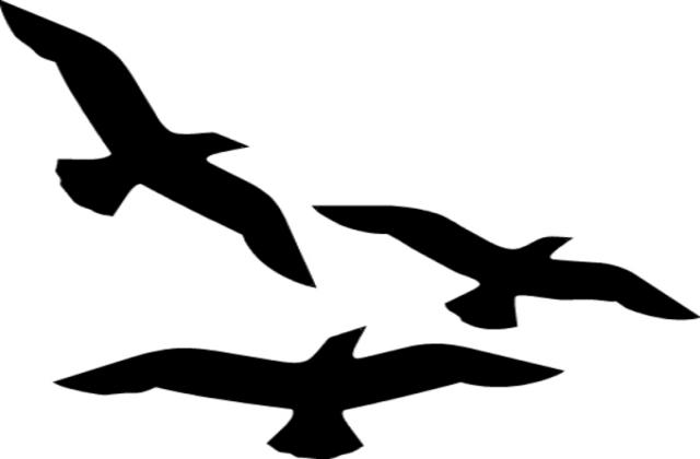 Birds Flying Silhouette Clip .-Birds Flying Silhouette Clip .-15