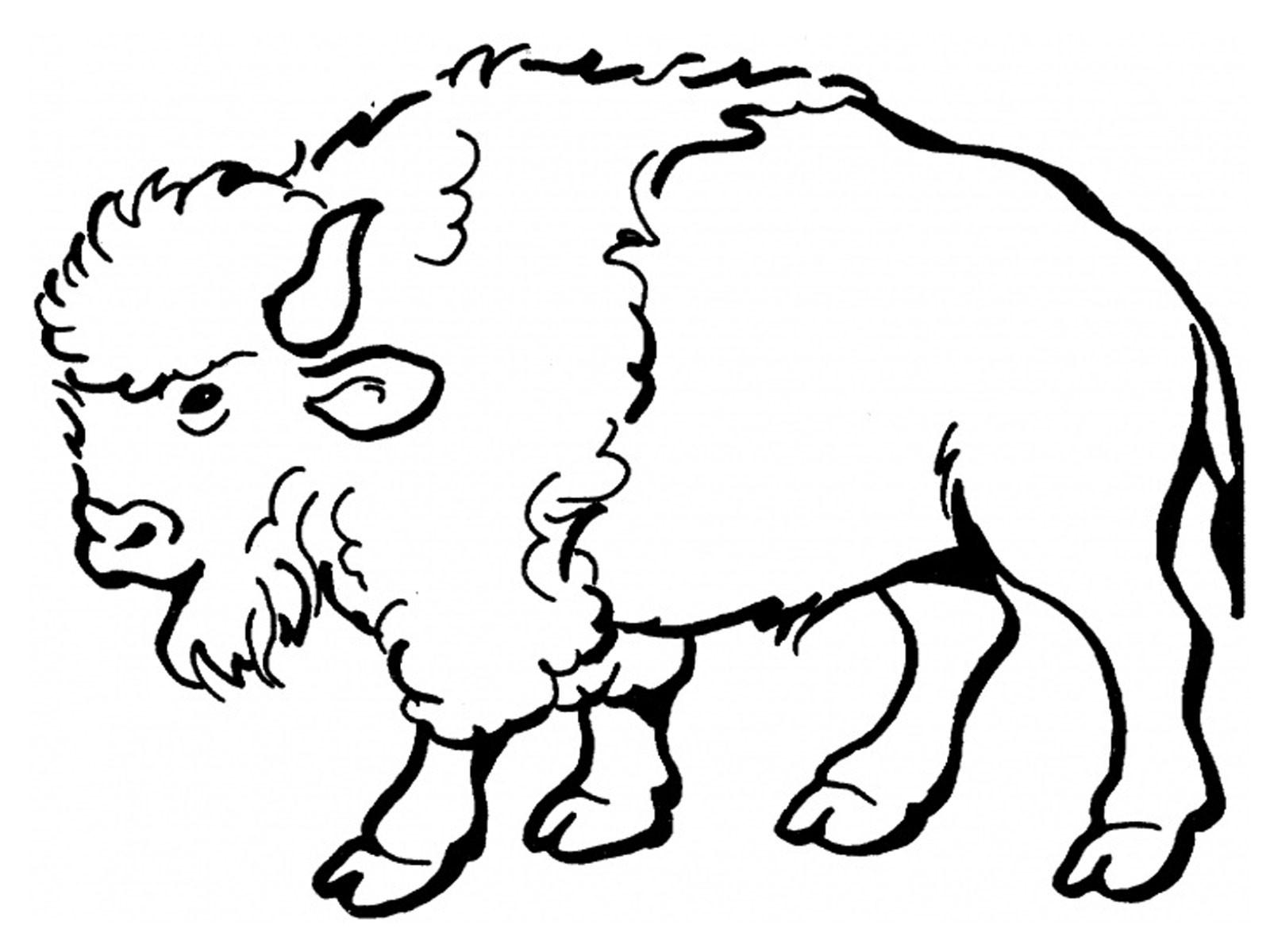 Bison Clip Art-Bison Clip Art-12