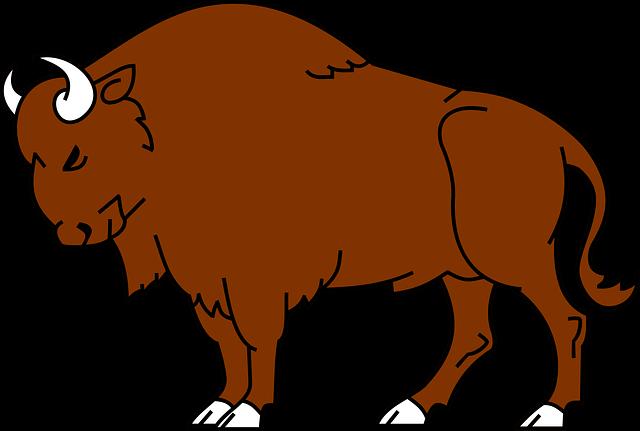 Bison Clipart-Bison Clipart-5