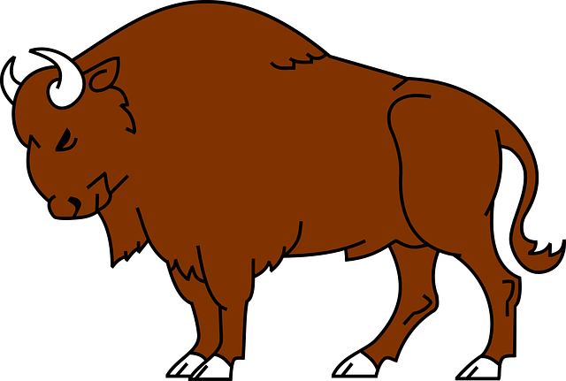 Bison Clipart-Bison Clipart-3