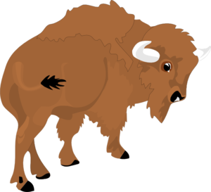 Bison Clip Art-Bison Clip Art-6