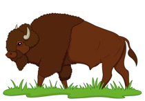 bison on praire clipart. Size: 99 Kb