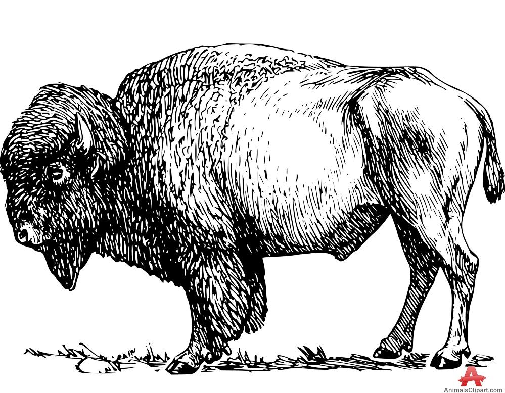 Bison Stencl Clipart-Bison Stencl Clipart-9