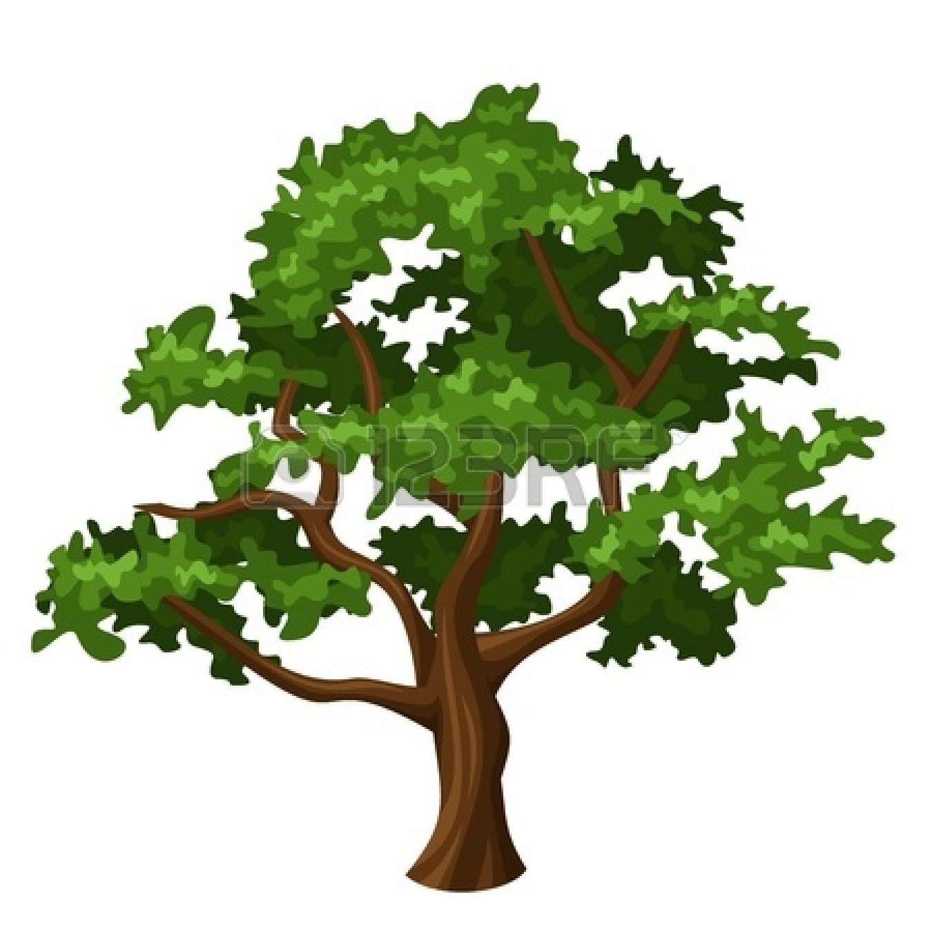 Black And White Oak Tree Clipart-black and white oak tree clipart-3