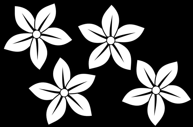 black and white pencil border - Black And White Flower Clipart