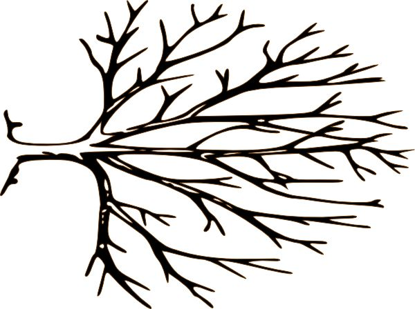 Black And White Bare Tree Clipart | Clipart Panda - Free Clipart ... | Wedding Tree | Pinterest | Trees, Art clipart and Stencils