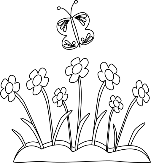Black and White Butterfly and Flowers-Black and White Butterfly and Flowers-10