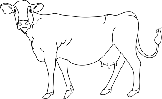 Black And White Cow Clipart. Cow clipart clipart clipartcow