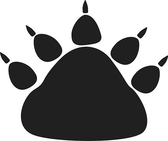 Black Bear Paw Print-Black Bear Paw Print-8