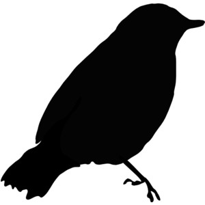Black Bird clip art - vector .