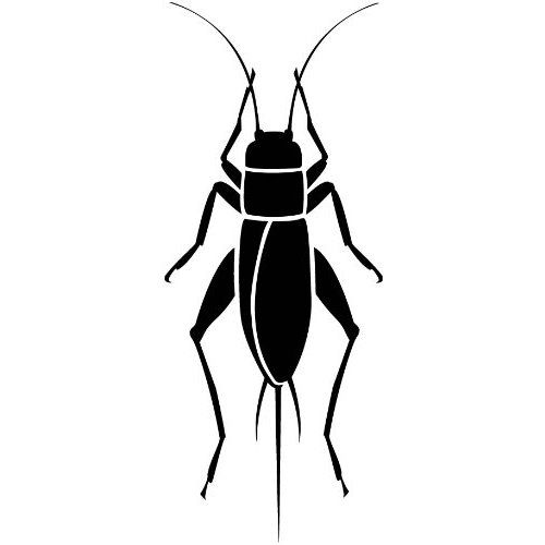 Black Cricket Insect Clipart - clipartsgram clipartall.com