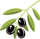 ... black olives ...